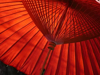 Red paper oil umbrella wallpaper