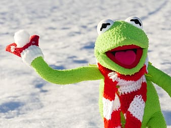 Kermit the Frog holding snowball