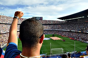 Person lifting his left hand cheering in soccer stadium