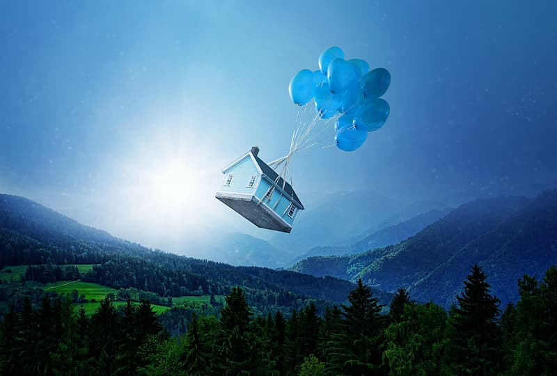 Blue and white cable car over green trees and mountain during daytime