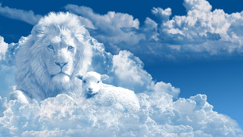 White lion on white clouds