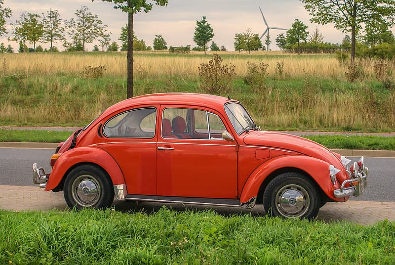 Red volkswagen beetle on green grass field during daytime