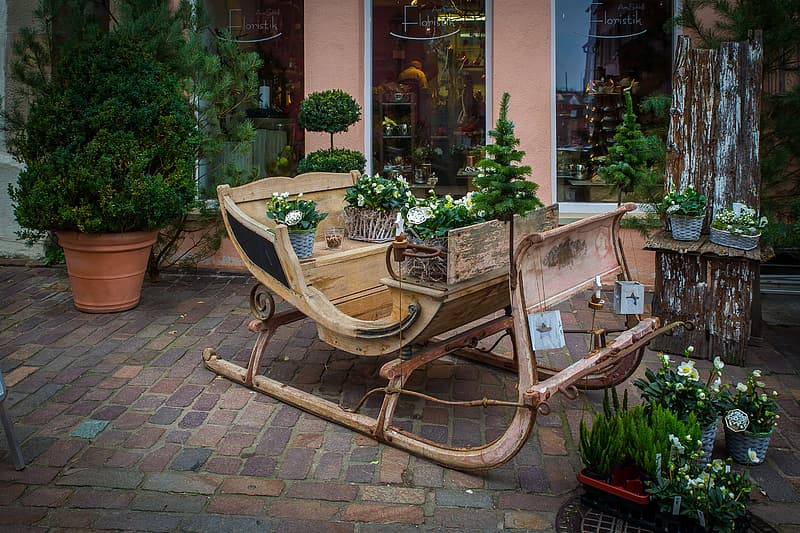 Brown wooden armchair beside green potted plant