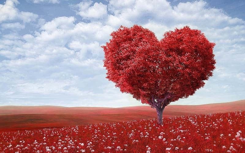 Heart-shaped tree on red field under blue sky