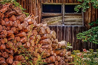 Pile of brown firewood near brown wooden fence