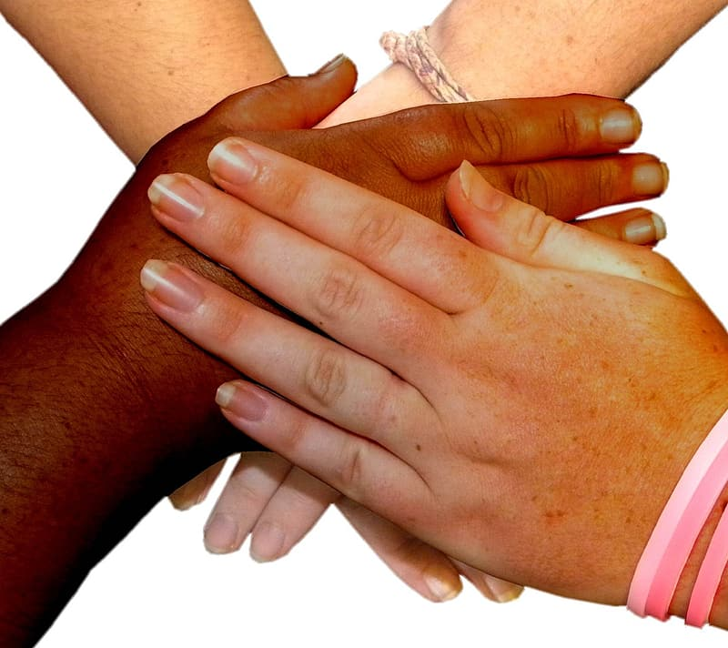 Four person's hands