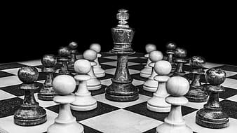 White and black chess board illustration