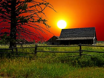 Black wooden house on green grass field during sunset