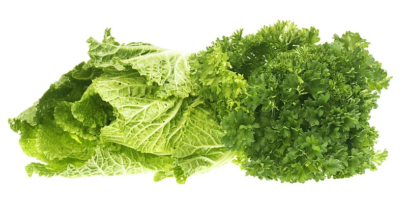 Green leafy vegetable on white background | Pikrepo