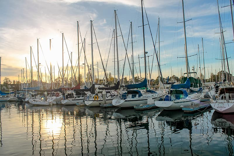 White sailboats on body of water