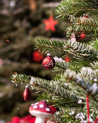 Red bauble hanged on christmas tree