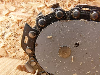 Close-up photography of saw