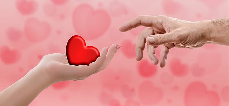 Person's hand holding heart illustration