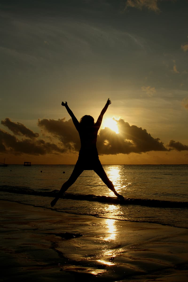 Silhouette of person jumping on seashore during sunrise