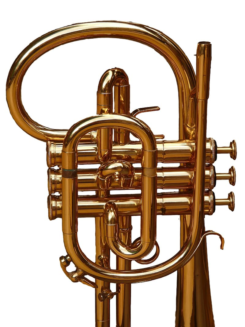 Brass-colored wind instrument