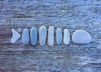 Gray and white stones on brown surface