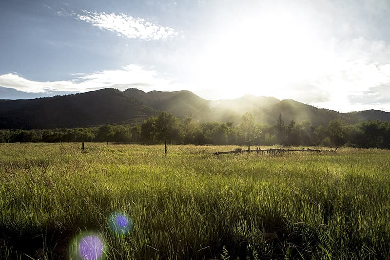 Landscape photography of grass field and mountains