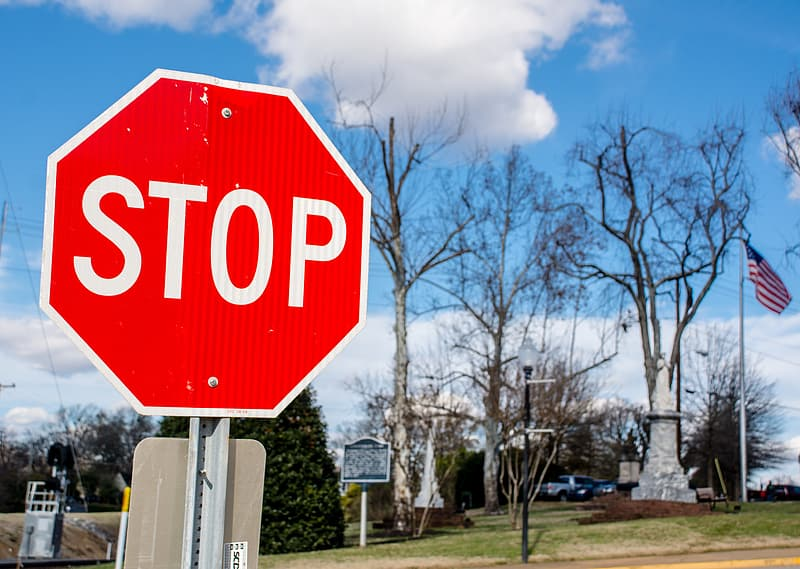Stop sign near bare trees under white clouds and blue sky during daytime