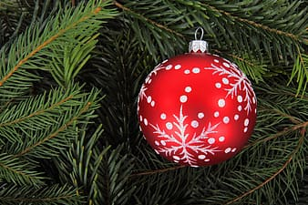 Red and grey snowflake printed ornament on Christmas tree