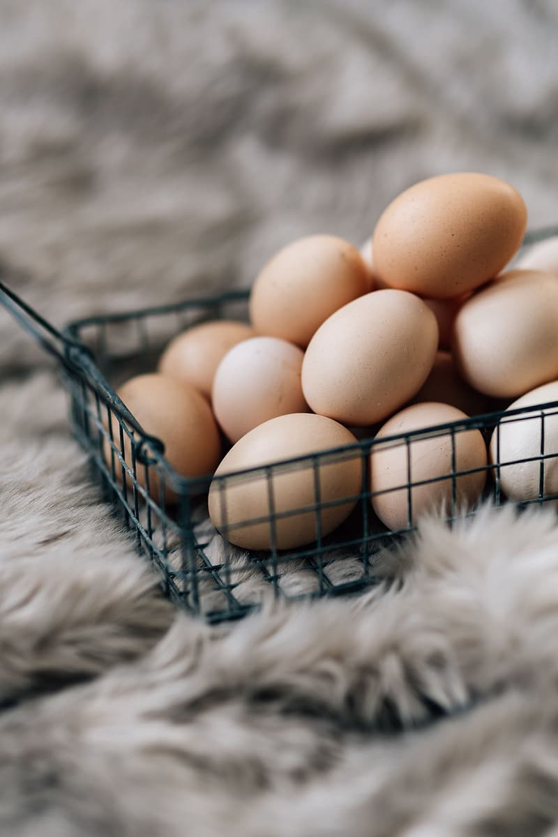 Wire mesh basket with fresh farm eggs