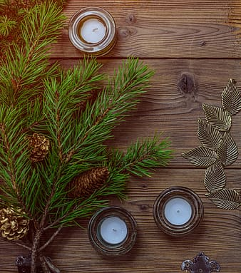 Three tealight candles near branch of fir leaves with pine cones