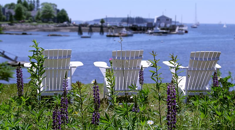 White wooden chairs on green grass near body of water during daytime