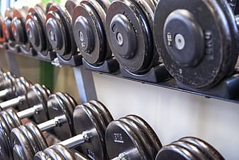 Black and silver dumbbells on rack