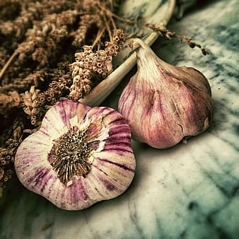 Two purple garlic on white textile