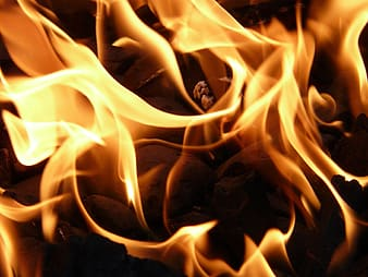 Close up view of yellow fire