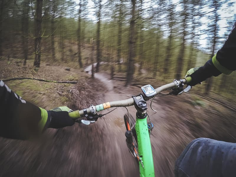 Green mountain bicycle passing in the forest
