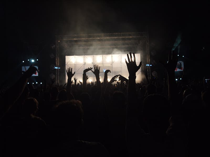 Photo of group of fans during concert