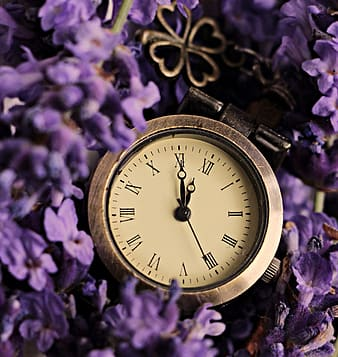 Close-up photography of round gold-colored analog watch displaying 11:55 time