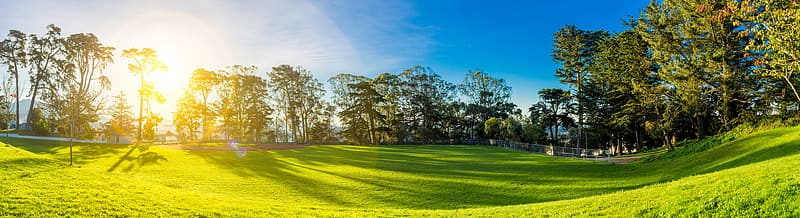 Green grass field surrounded by trees at daytime