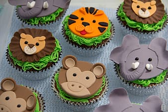 Animal-themed cupcakes