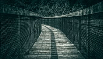 Bridge in grayscale photography