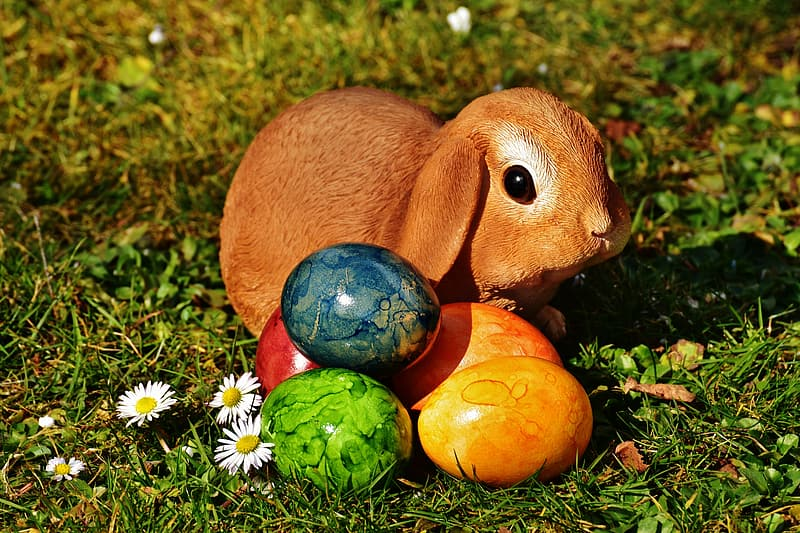 Brown rabbit and eastern eggs