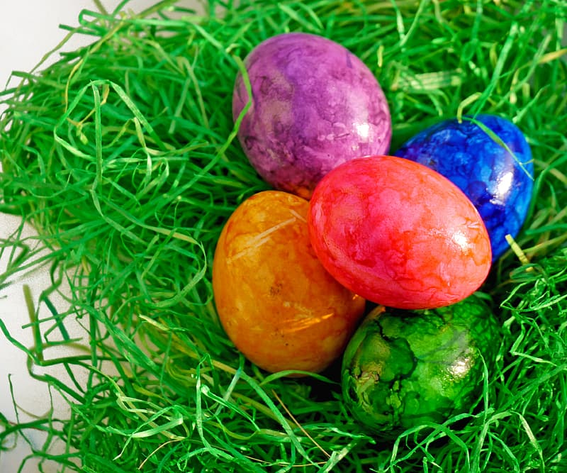 Easter eggs on top of green nest