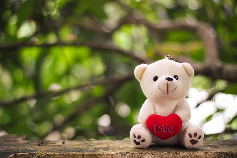 Photo of white bear with heart plush toy on brown surface