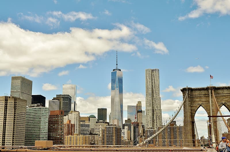 Photography of Brooklyn Bridge and Freedom Tower at daytime