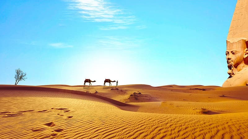 Two camels in desert and a brown structure