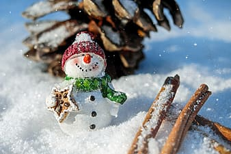 Closeup photo of Snowman surrounded by snow