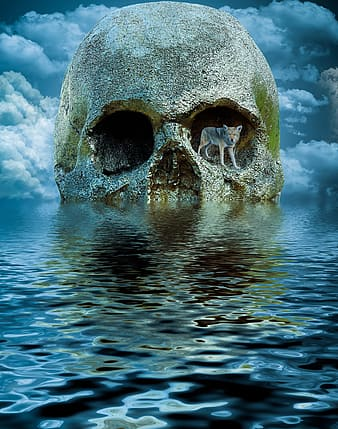 Gray and beige wolf standing in left eye socket of skull on body of water digital wallpaper