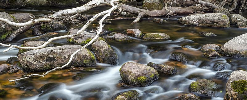 Flowing river with scattered rocks