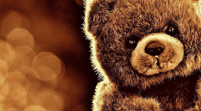 Shallow focus photography of brown bear plush toy