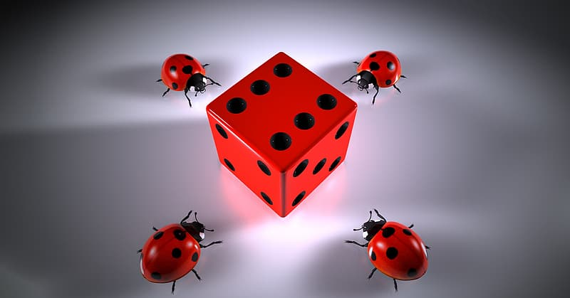 Four ladybugs crawling near red and black dice