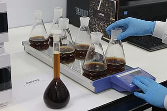 Person holding clear glass laboratory flasks