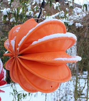 Orange hanging decor covered with snow