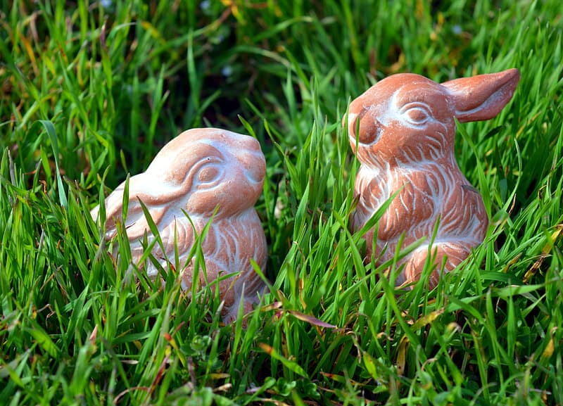 Two brown rabbit figurines on grass