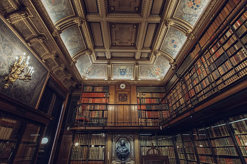Brown wooden book shelves inside library