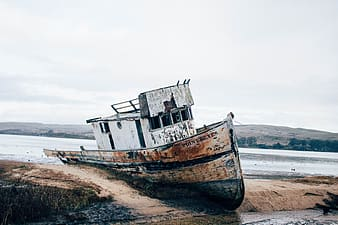Brown and white boat on brown sand during daytime